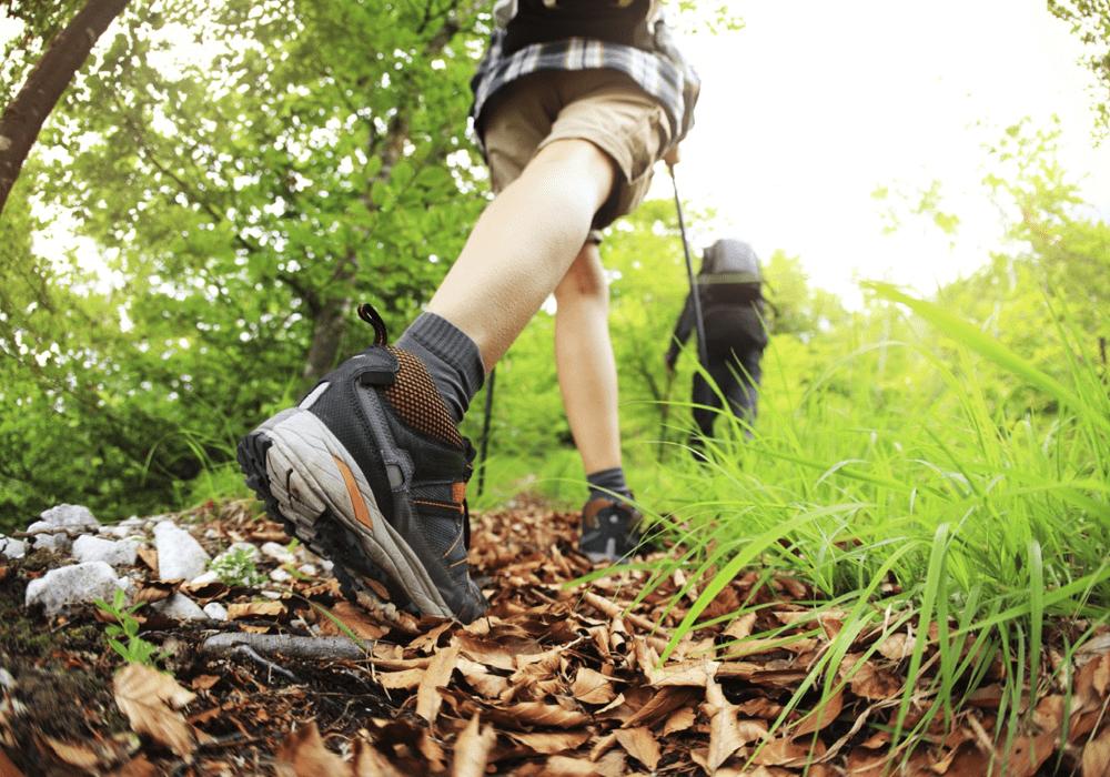 Caminhas em Trilhas Ecológicas | Canto da Floresta Ecooresort